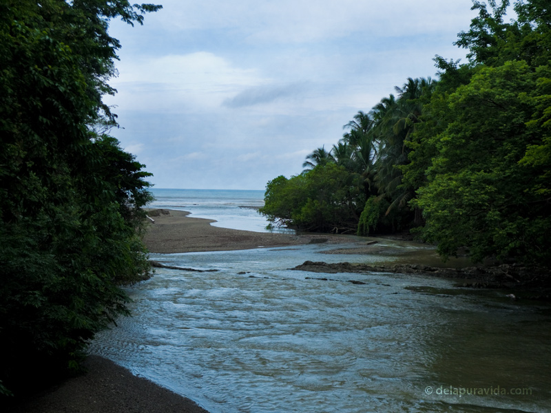 River meets ocean