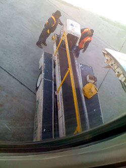 dog crate being loaded on to an airplane