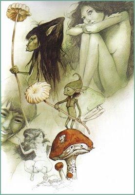 brian froud fairies holding mushrooms