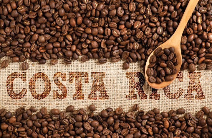 Whole Costa Rican coffee beans being scooped up to reveal the name Costa Rica on burlap. Image made by Erin Morris.