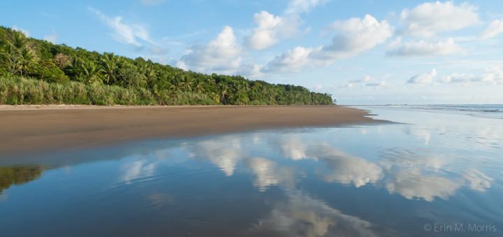 The beach at Playa Uvita Bahia Ballena