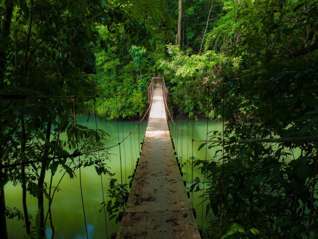 rusty swinging foot bridge over emerald green river Rio Claro Drake Bay hike Costa Rica