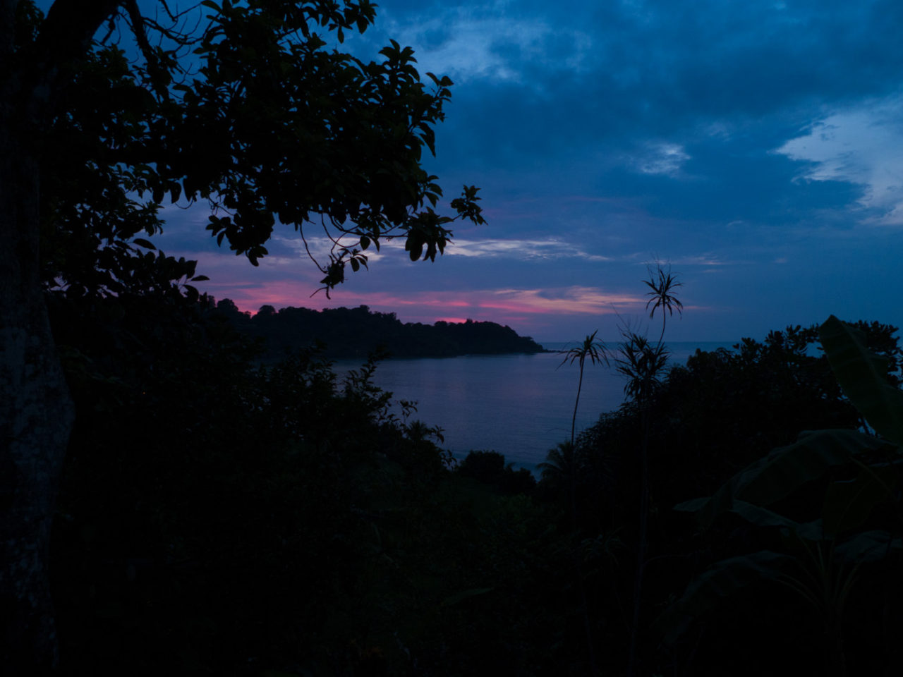 sunset viewed from the jungle overlooking drake bay costa rica