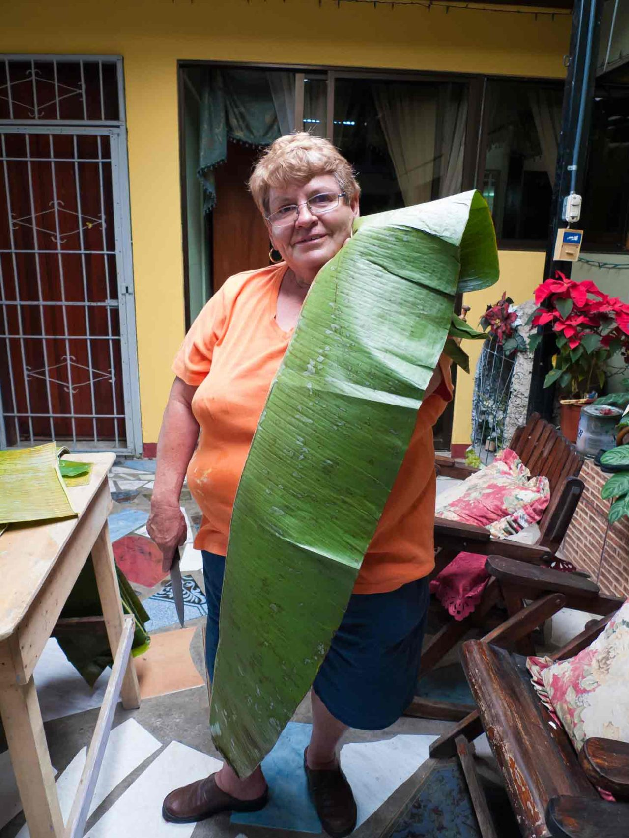 Costa Rican Tamales - plantain leaves are long! Recipe with photos