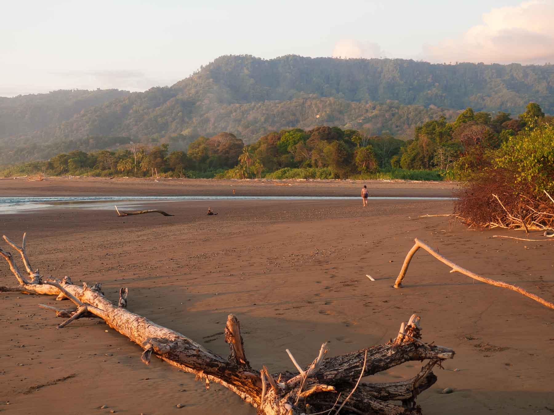 beach in Uvita Costa Rica