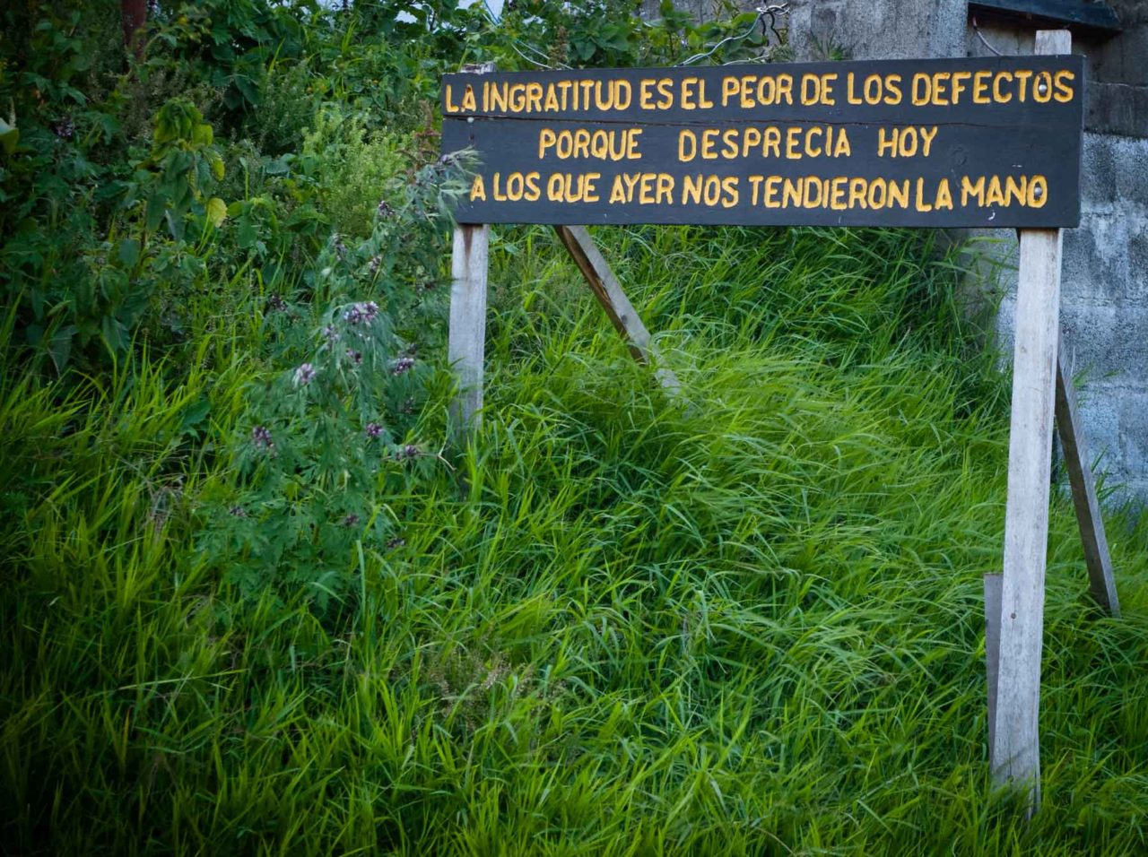 inspirational message painted on wooden sign along costa rican road