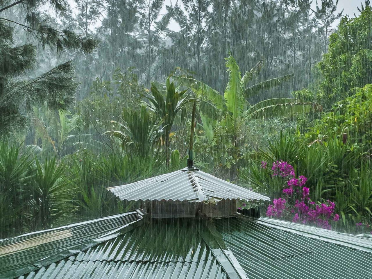 hard rain in the costa rica mountains