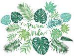 pura vida palm leaves and monstera watercolor sticker