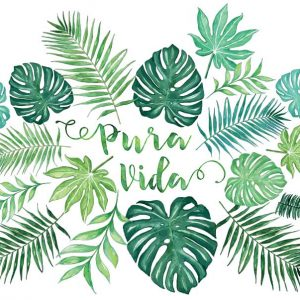 pura vida palm leaves and monstera watercolor sticker