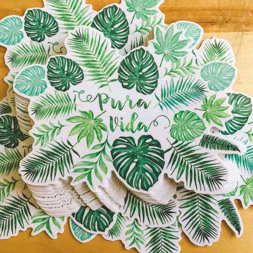 pura vida monstera watercolor sticker stack copyright Erin Morris